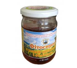 Фитосироп Из плодов шиповника и облепихи